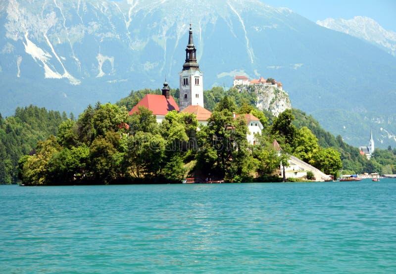 Sangrado em Slovenia fotos de stock