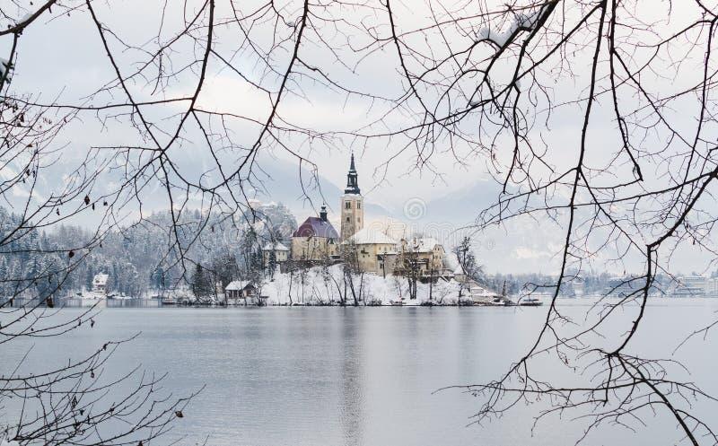 SANGRADO, ESLOVENIA - ENERO DE 2015: visión sobre iglesia gótica en la isla del lago foto de archivo