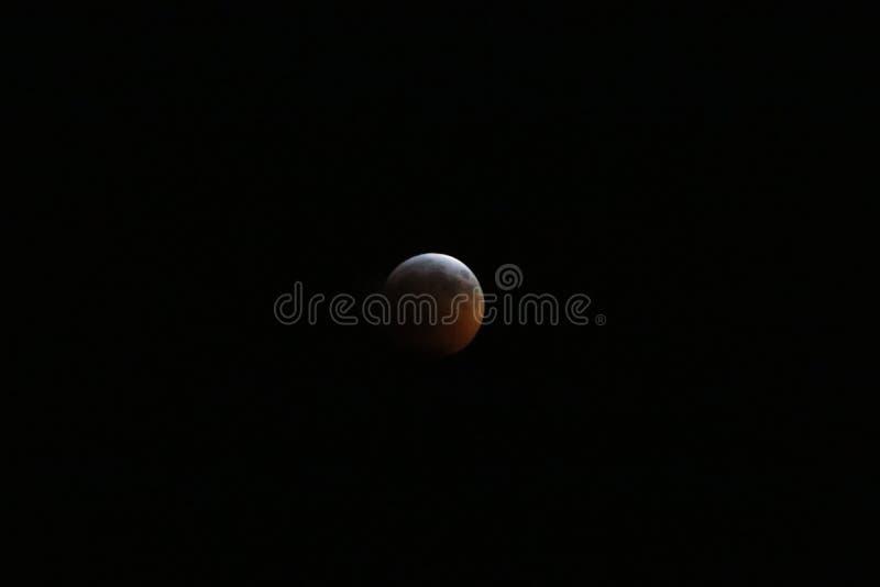 Sangre estupenda Wolf Moon January 2019 3 fotografía de archivo