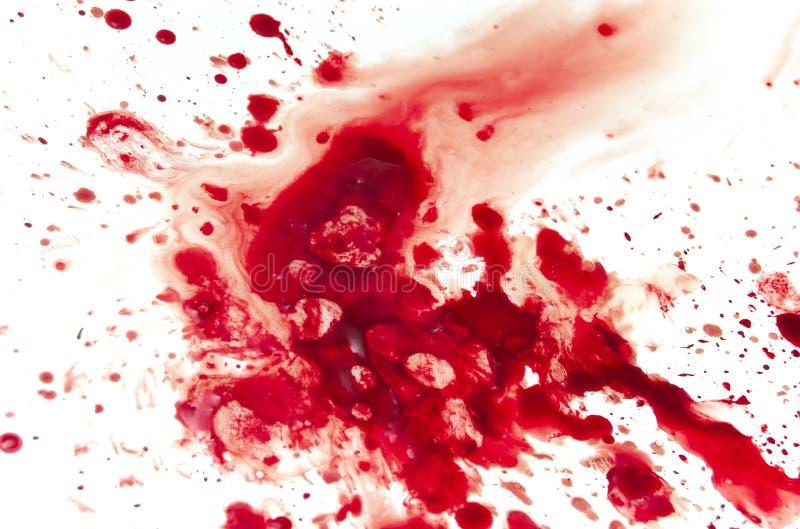Sangue fotografia de stock
