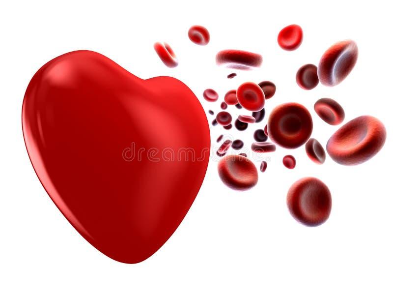 Sangue e coração ilustração do vetor