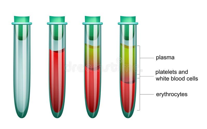 Sangue nella provetta, nel plasma ed in eritrociti royalty illustrazione gratis