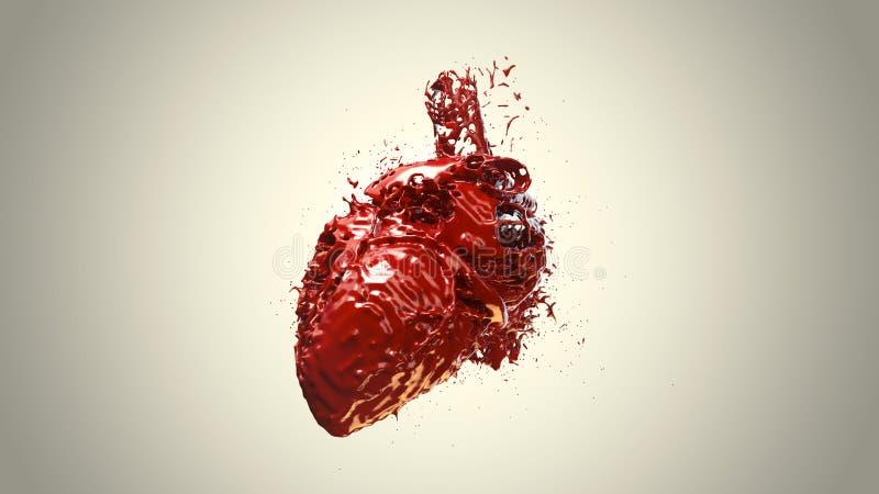 Sangue riempito cuore fotografia stock