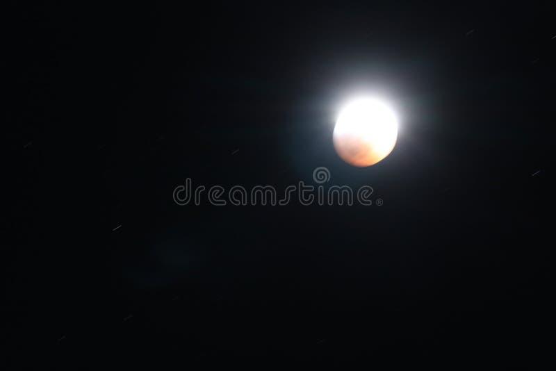 Sangue super Wolf Moon January 2019 5 fotografia de stock royalty free
