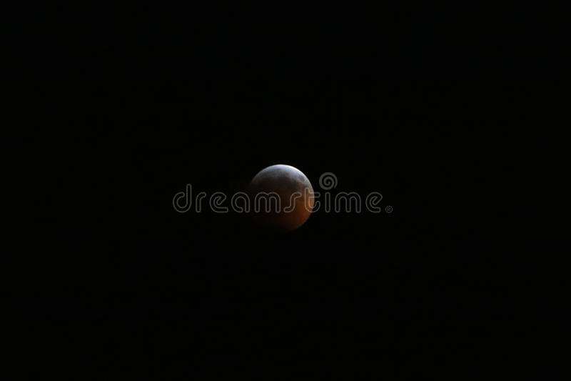 Sangue super Wolf Moon January 2019 3 fotografia de stock