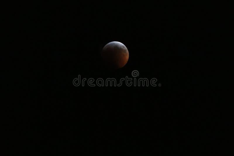 Sangue super Wolf Moon January 2019 1 fotos de stock royalty free