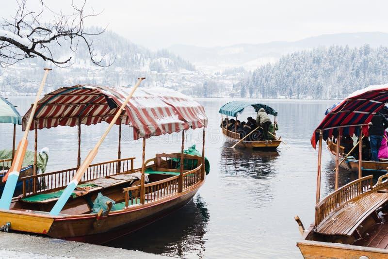 SANGUINATO, LA SLOVENIA - GENNAIO 2015: il barcaiolo trasporta i turisti all'isola sul lago immagine stock
