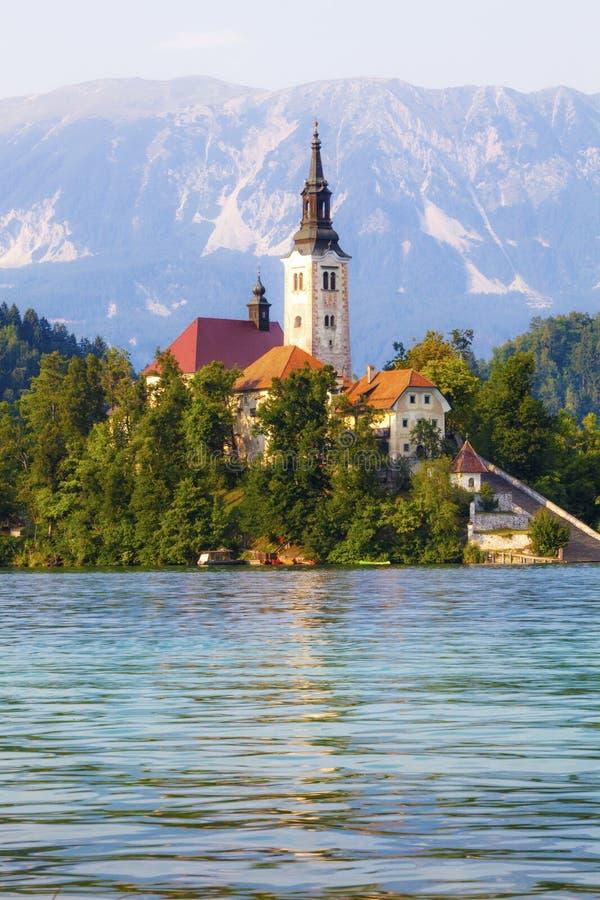 Sanguinato, la Slovenia Isola in mezzo al lago con la chiesa immagini stock libere da diritti