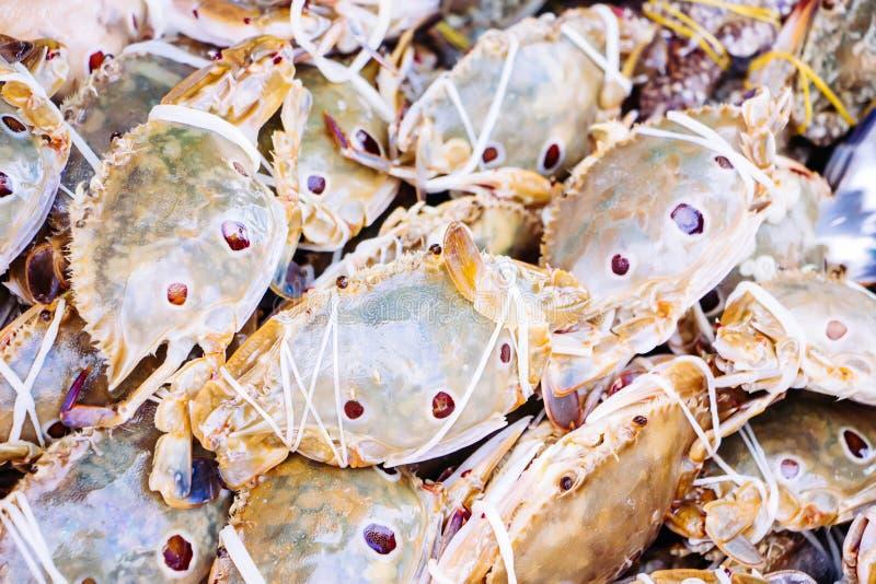 sanguinolentus Portunus краба плавания 3-пятна на рынке стоковые изображения rf