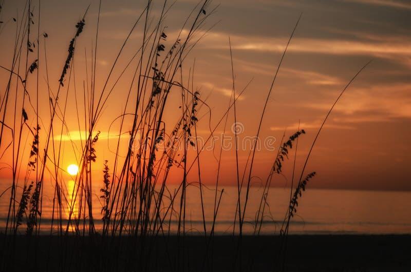 Sanibel-Sonnenuntergang stockfoto