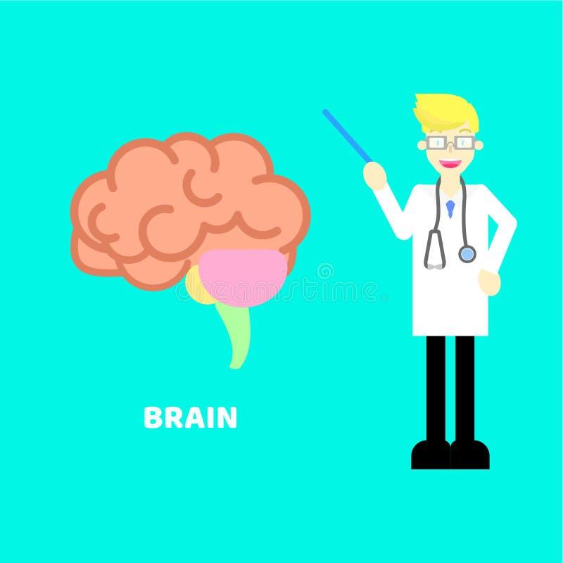 Sanità medica del cervello della chirurgia di anatomia dell'organo interno con medico, stetoscopio nel ciano fondo illustrazione vettoriale
