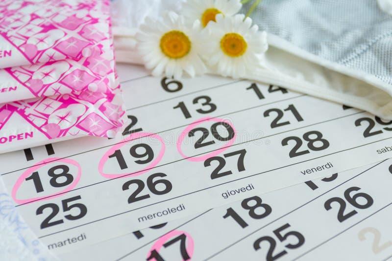 Sanitära block, kalender, tamponger, underkläder med vita tusenskönor royaltyfri bild