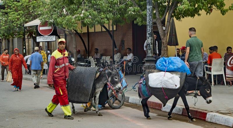 Sanitarni pracownicy w Fes, Maroko zdjęcie stock