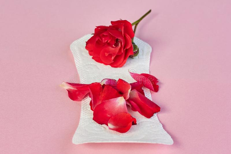 Sanitary napkin and flower petals on pink background stock photos