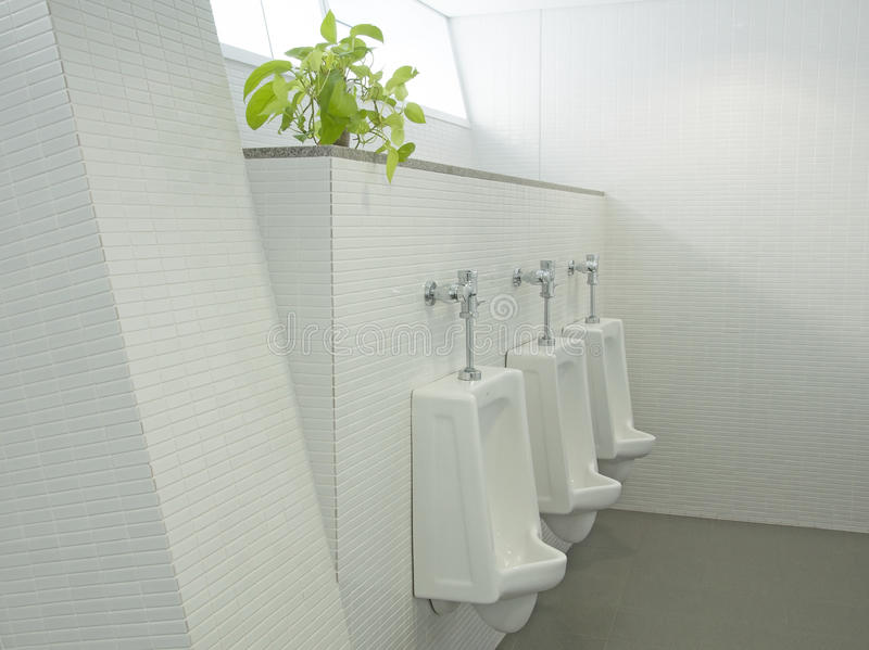 Sanitary ware. The sanitary ware for men royalty free stock image