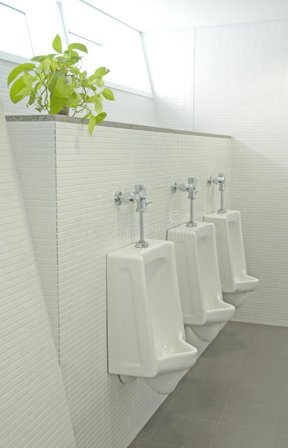 Sanitary ware. The sanitary ware for men royalty free stock photography