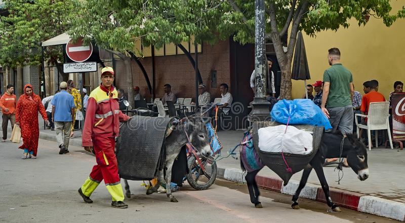 Sanitary Workers in Fes, Morocco stock photo