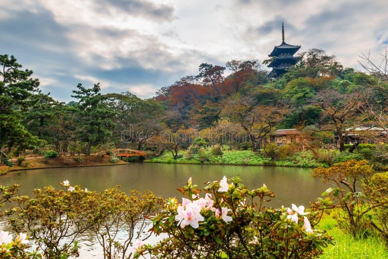 Sankeien ogród z Tomyoji poprzedni trzy piętrowa pagoda, kwiaty i woda w Yokohama, jesieni tło fotografia royalty free