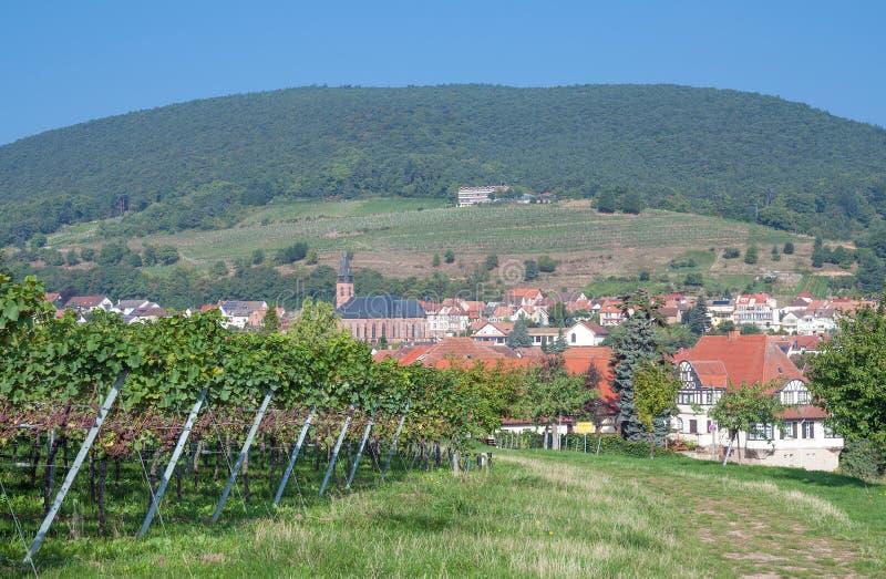 Sankt Martin, itinéraire allemand de vin, Allemagne photographie stock libre de droits