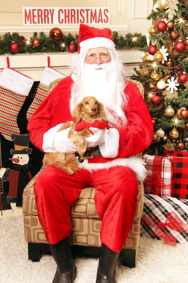 Sankt und der Hund lizenzfreies stockfoto