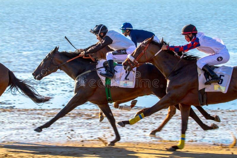 Horse race on Sanlucar of Barrameda, Spain. SANLUCAR DE BARRAMEDA, CADIZ, SPAIN - AUG 8: Unidentified riders race the first horses race called Gran Hipodromo stock image