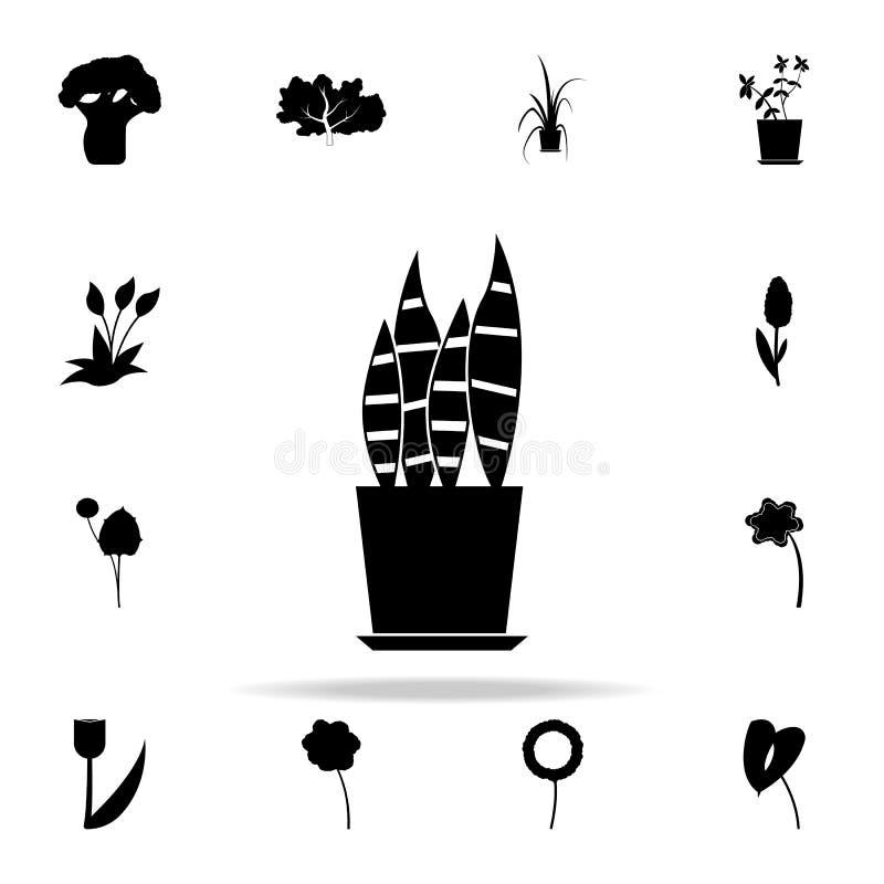 sansevieria ikona Rośliien ikon ogólnoludzki ustawiający dla sieci i wiszącej ozdoby ilustracja wektor