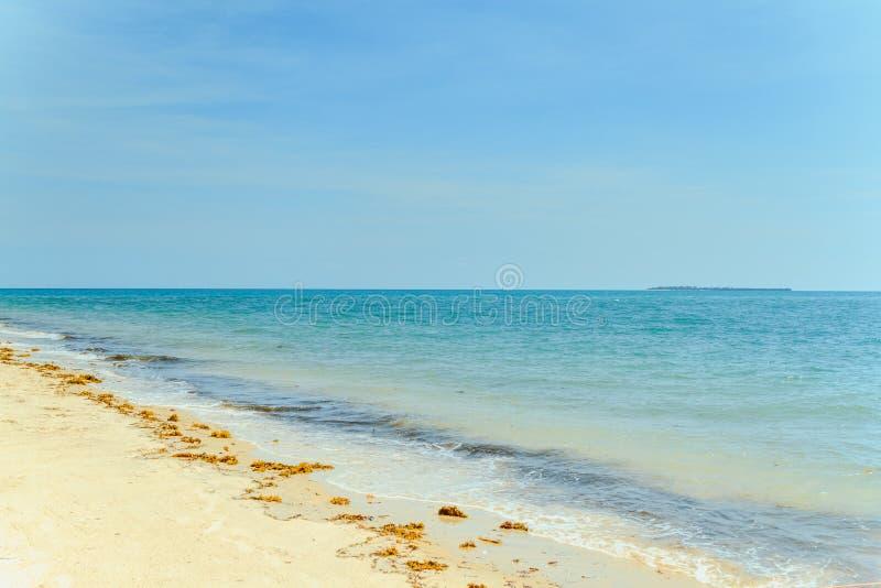 Sansibar-Küstenlinie stockbild
