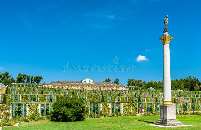 Sanssouci, o palácio de verão de Frederick o grande, rei de Prússia, em Potsdam, Alemanha foto de stock royalty free