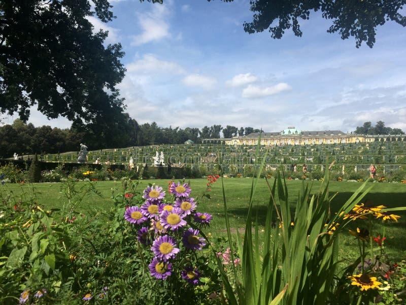 Download Sanssouci trädgårdsikt fotografering för bildbyråer. Bild av germany - 78730245