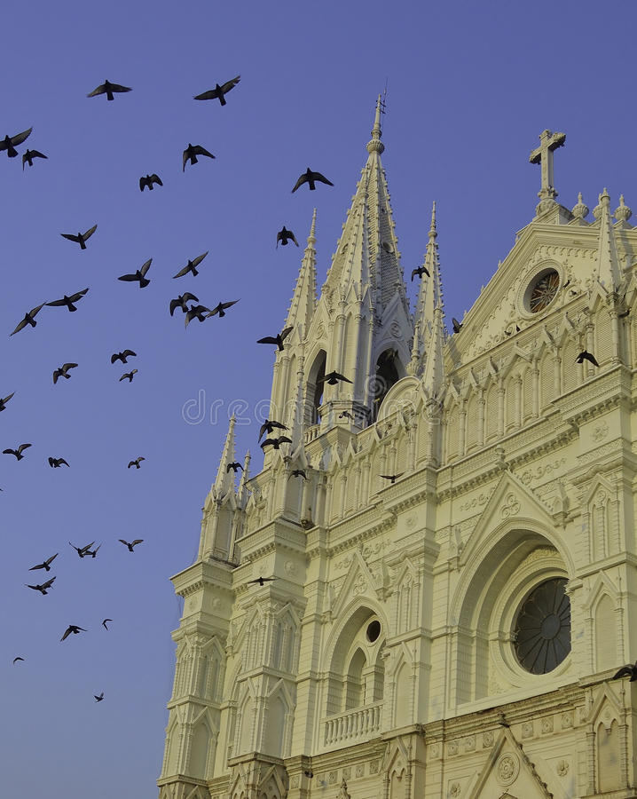 Download Santa Ana covered in birds stock image. Image of religion - 36926533