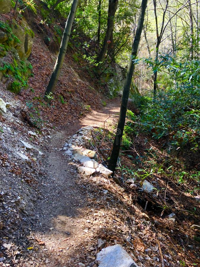 Santa Anita Canyon Hiking Trail fotografia stock libera da diritti
