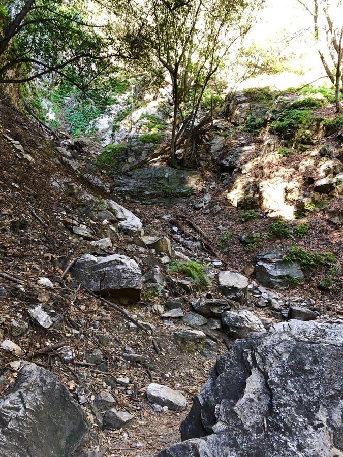 Santa Anita Canyon Hiking Trail images libres de droits