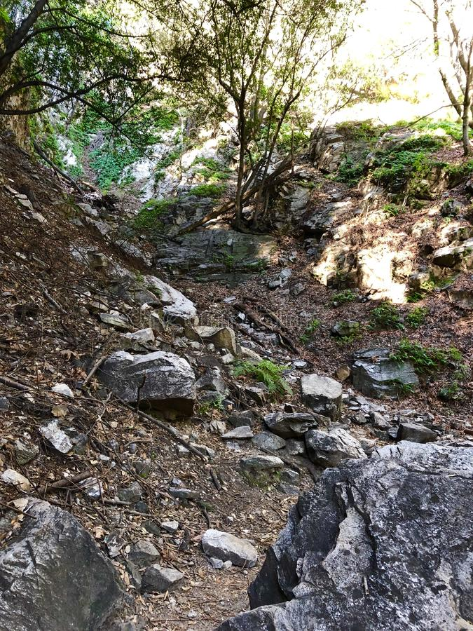 Santa Anita Canyon Hiking Trail immagini stock libere da diritti