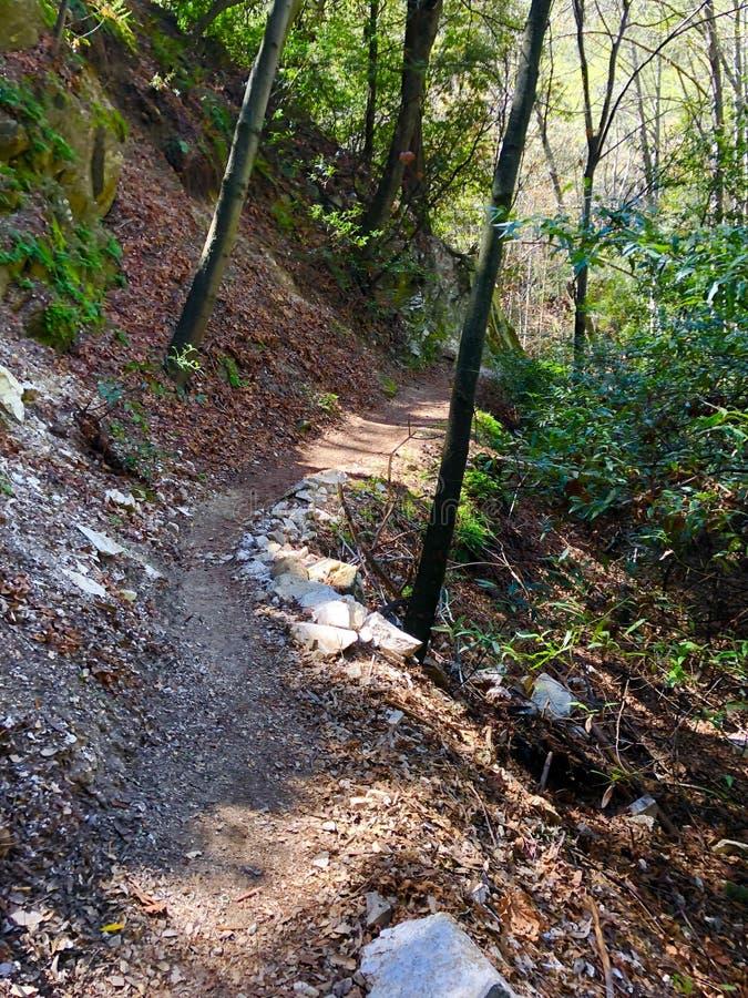Santa Anita Canyon Hiking Trail photographie stock libre de droits