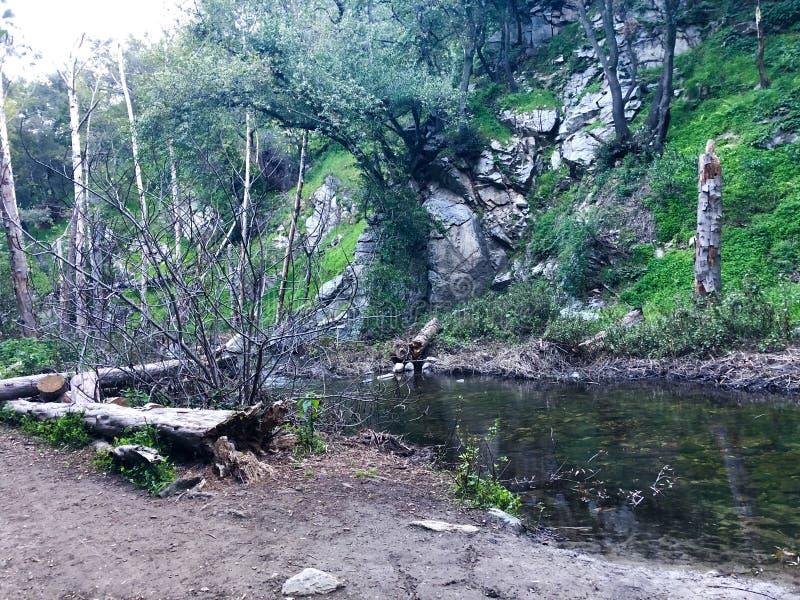 Santa Anita Canyon River fotografia stock