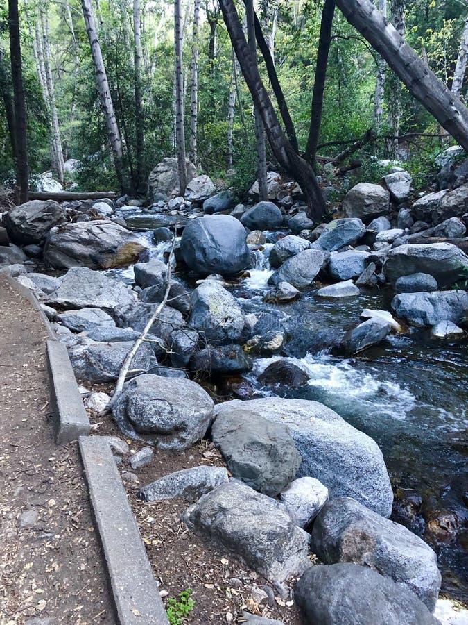 Santa Anita Canyon River immagine stock
