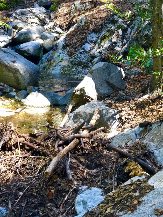 Santa Anita Canyon River fotografie stock libere da diritti
