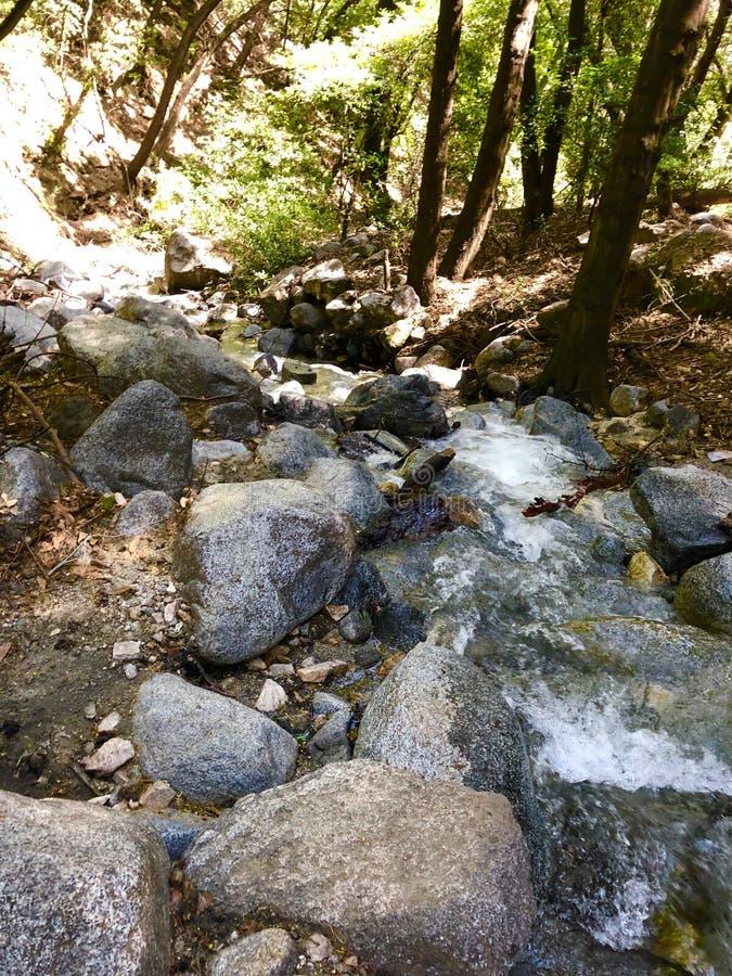 Santa Anita Canyon River fotografia stock libera da diritti