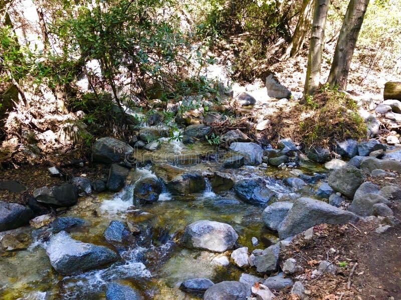 Santa Anita Canyon River image stock