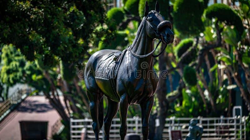 Santa Anita Park Horse Racing royaltyfri bild