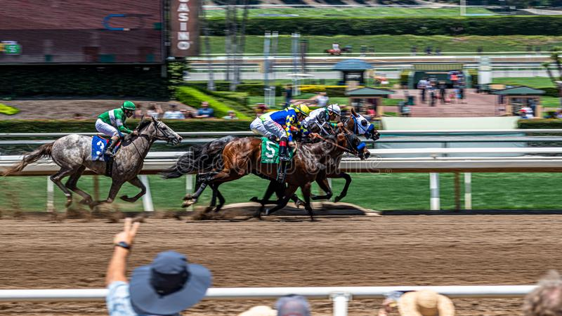 Santa Anita Park Horse Racing fotografia stock libera da diritti