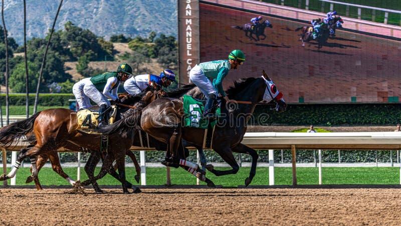 Santa Anita Park Horse Racing fotografia de stock royalty free