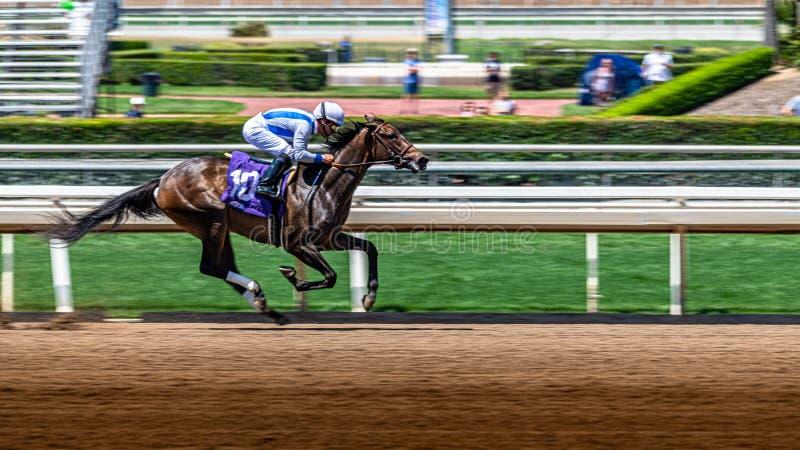 Santa Anita Park Horse Racing fotografie stock