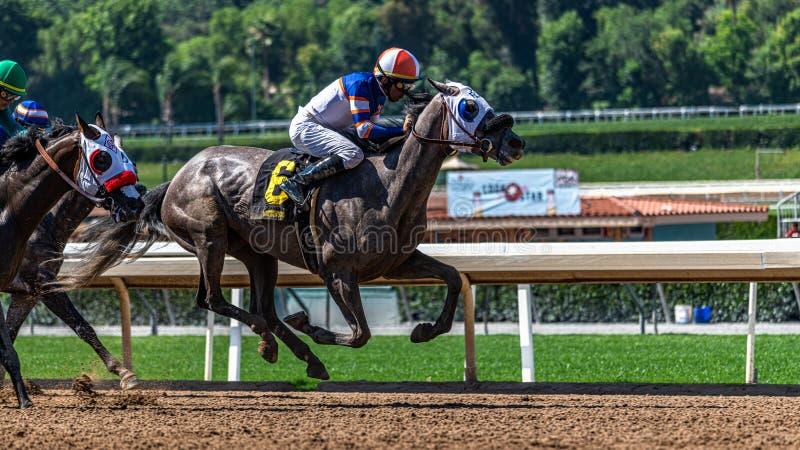 Santa Anita Park Horse Racing photographie stock libre de droits