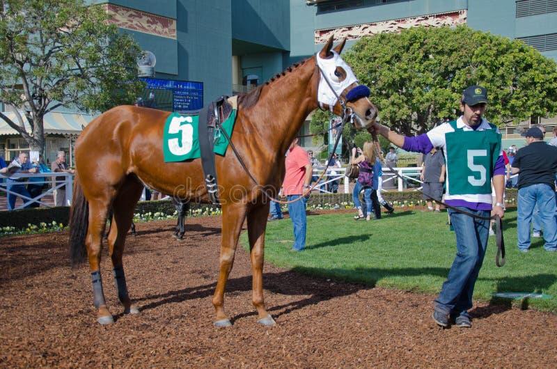 Santa Anita Racetack immagini stock