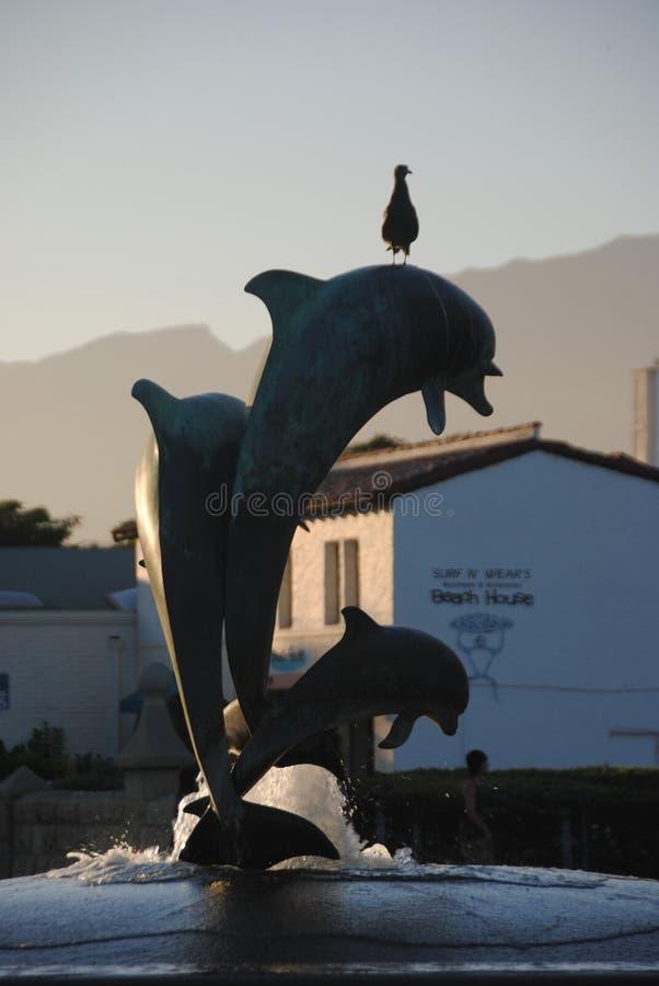 Santa Barbara Förenta staterna - Juli 7, 2013: En fågel på en delfinspringbrunn på solnedgången royaltyfri fotografi