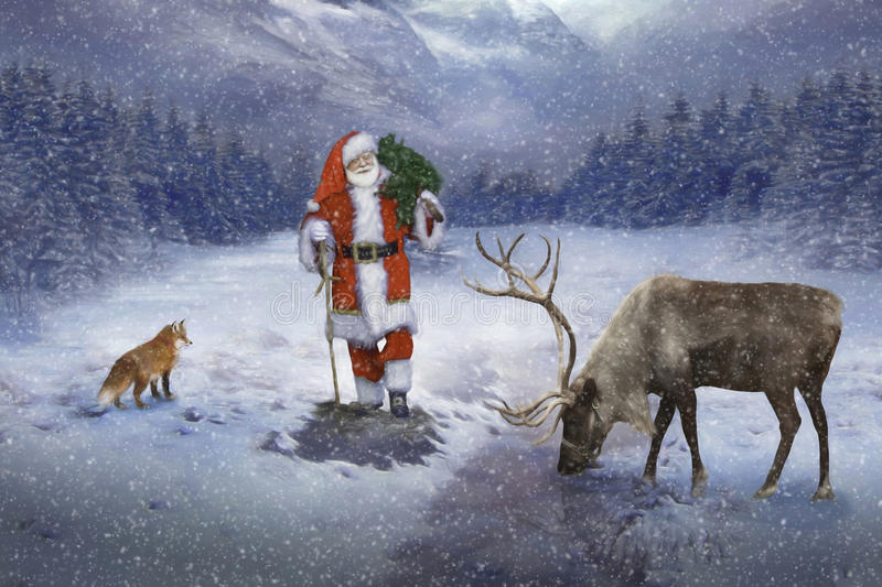 Santa carrying tree in forest. The Santa Claus carrying a tree in a snowy forest with his reindeer and fox friends next to him stock image
