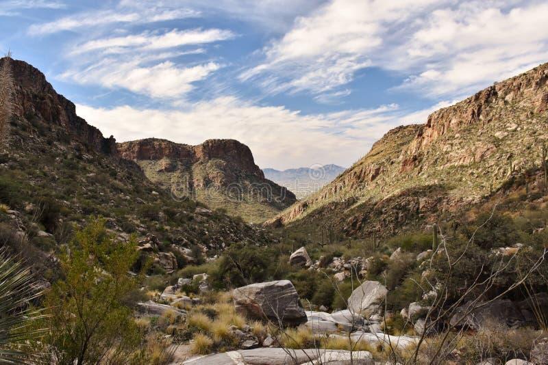Santa Catalina Mountains in Tucson, Arizona stock fotografie