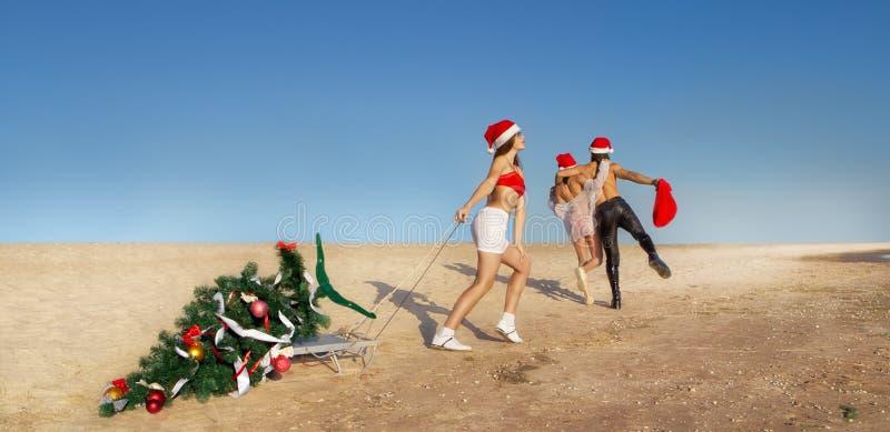 Santa che tira l'albero di Natale fotografia stock