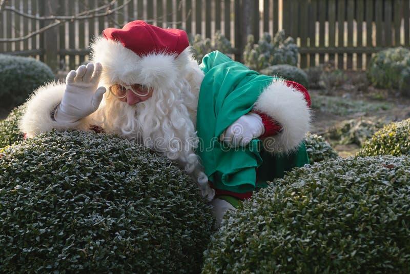 Happy Santa Claus portrait royalty free stock photography